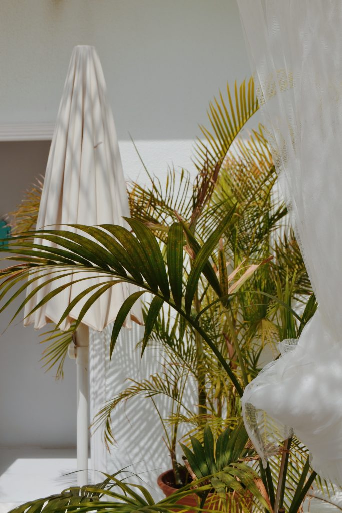 Bamboo palm white curtain