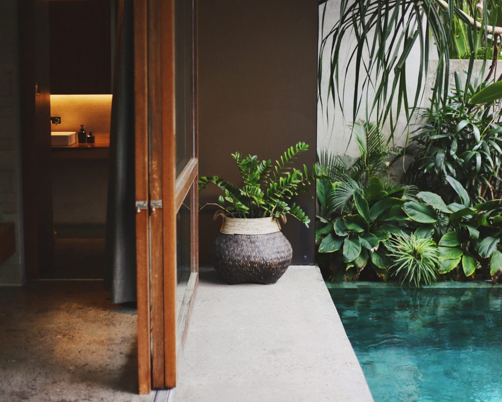 private pool hotel room design plants
