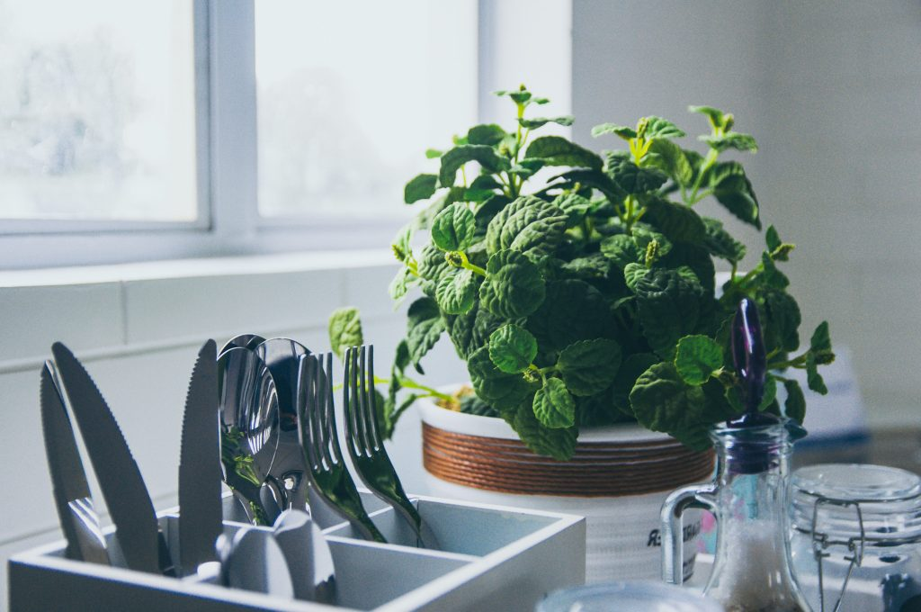 mint in wooden pit kitchen dishes
