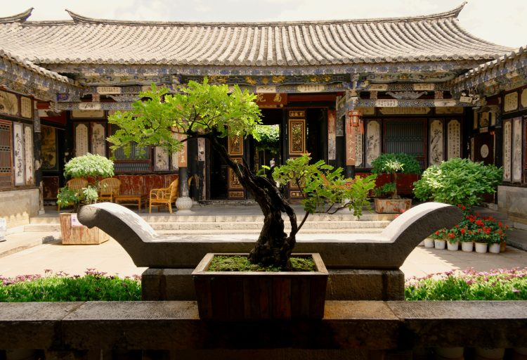 BONSAI TREES TRADITIONAL HOUSE CHINESE