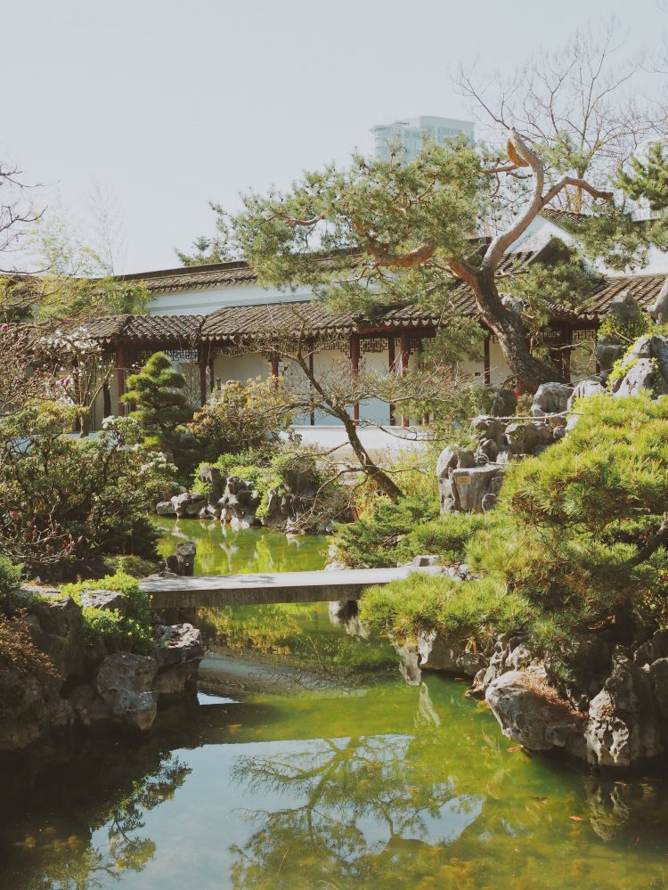 japanese garden design with bridge and trees